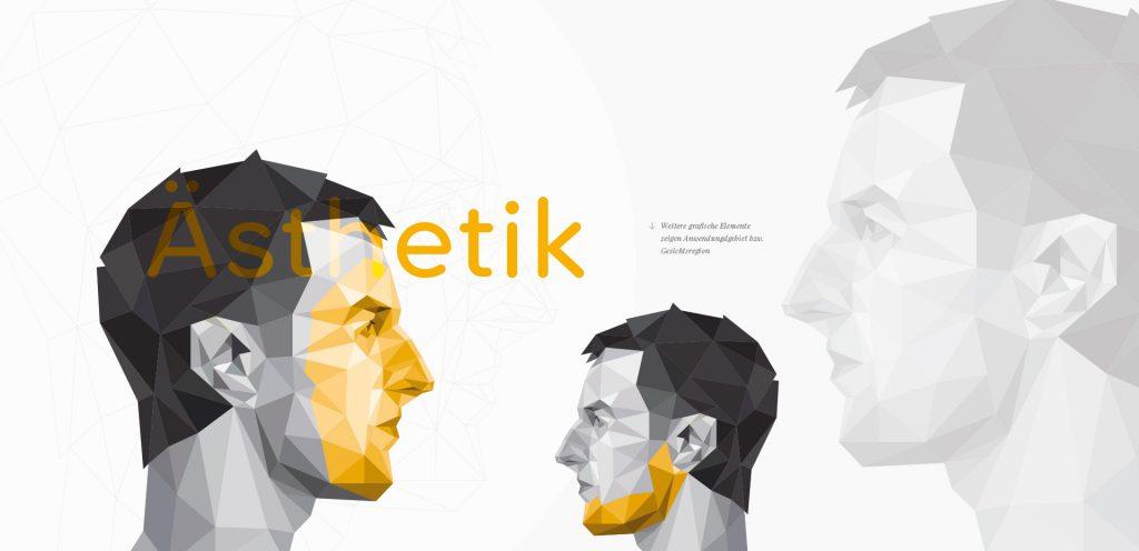 Alaventa GmbH Referenz Dr. Nahles Berlin Corporate Design grafische Elemente, Behandlungsbereiche im Gesicht, Kopf, Kiefer